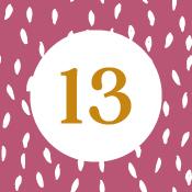Adventní kalendář - 13. den
