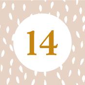 Adventní kalendář - 14. den