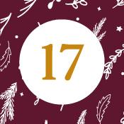 Adventní kalendář - 17. den