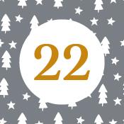 Adventní kalendář - 22. den