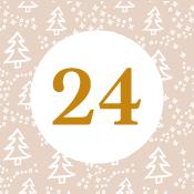 Adventní kalendář - 21. den