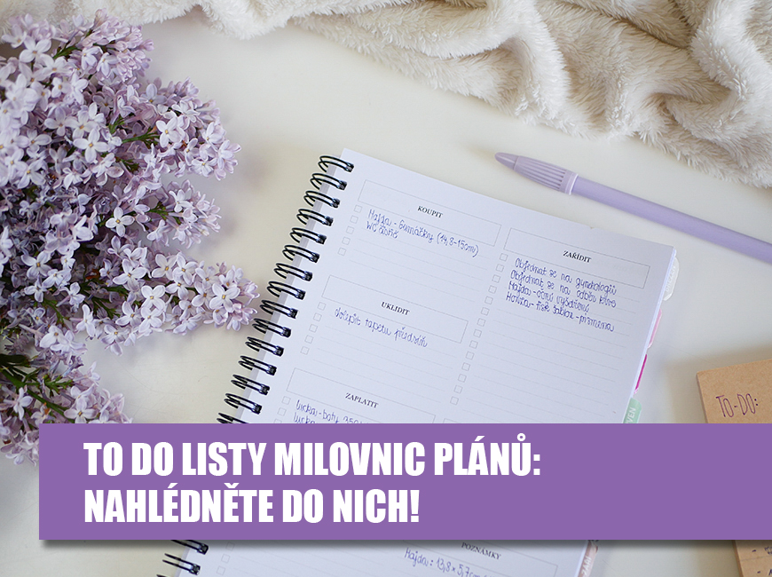 TO DO list, plánování úkolů - Fleppi.cz